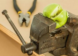 MINDFULNESS CAN BE A SOP FOR A TOXIC WORK ENVIRONMENT - image of a crushed apple